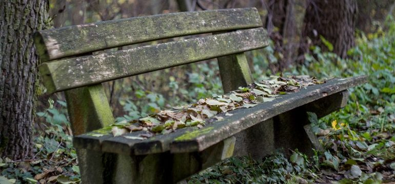 Top tips on making the most of autumn